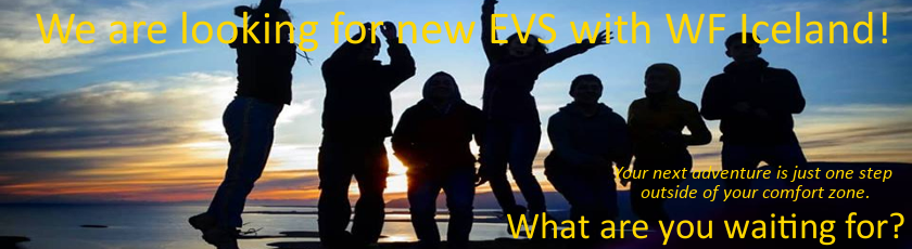 New EVS wanted!